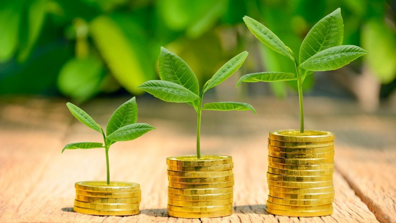 Ціноутворення бюджету проєкту або як інвестувати у свій бізнес, а не витрачати кошти.